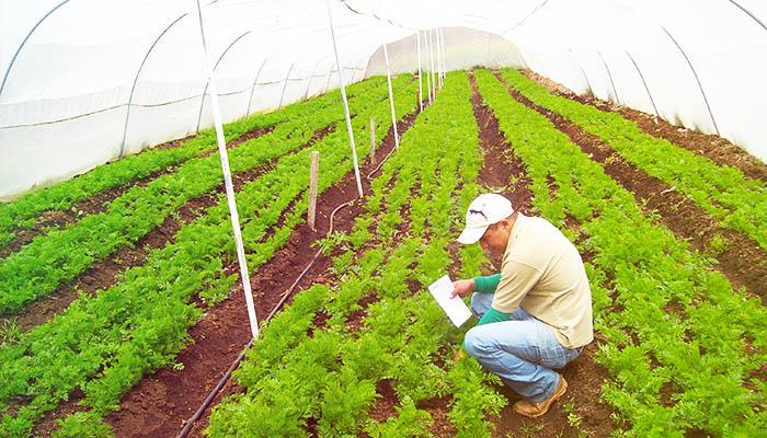 Copraul Calidad y Producción Agroecológica